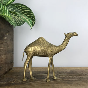 Vintage Brass Camel #A11 MEDIUM