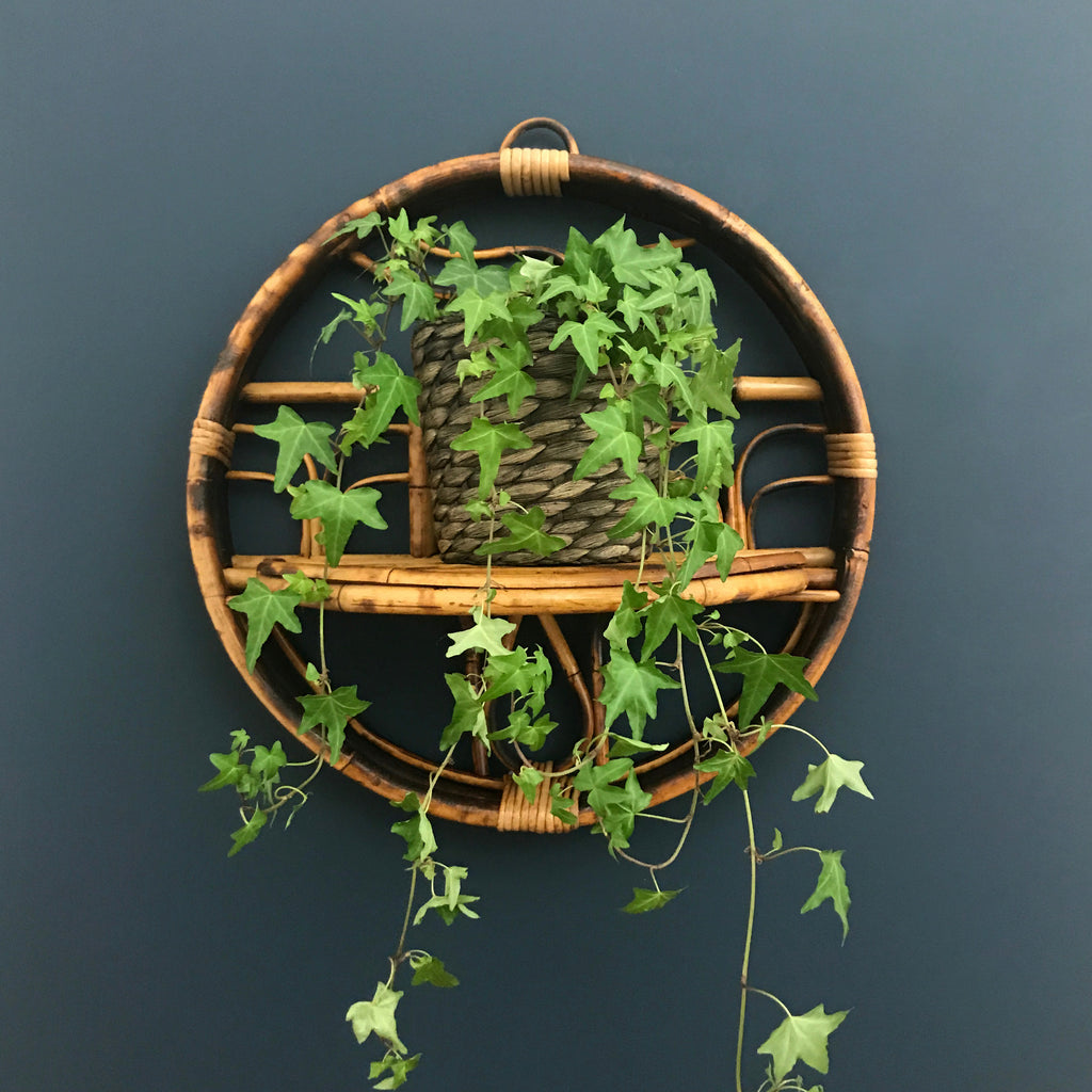 Boho Rattan Wall Planter with Shelf