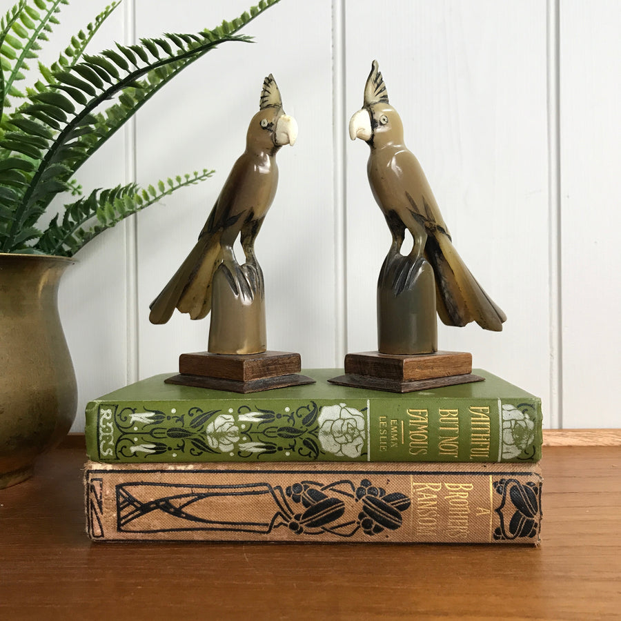 Mid Century Horn Carved Pair of Cockatoos