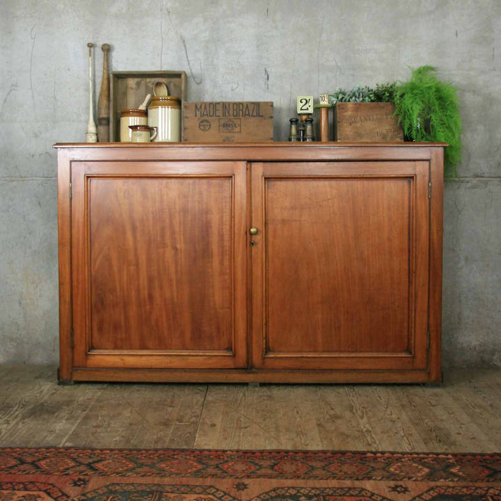 vintage_antique_mahogany_cupboard_cabinet_school_library.1