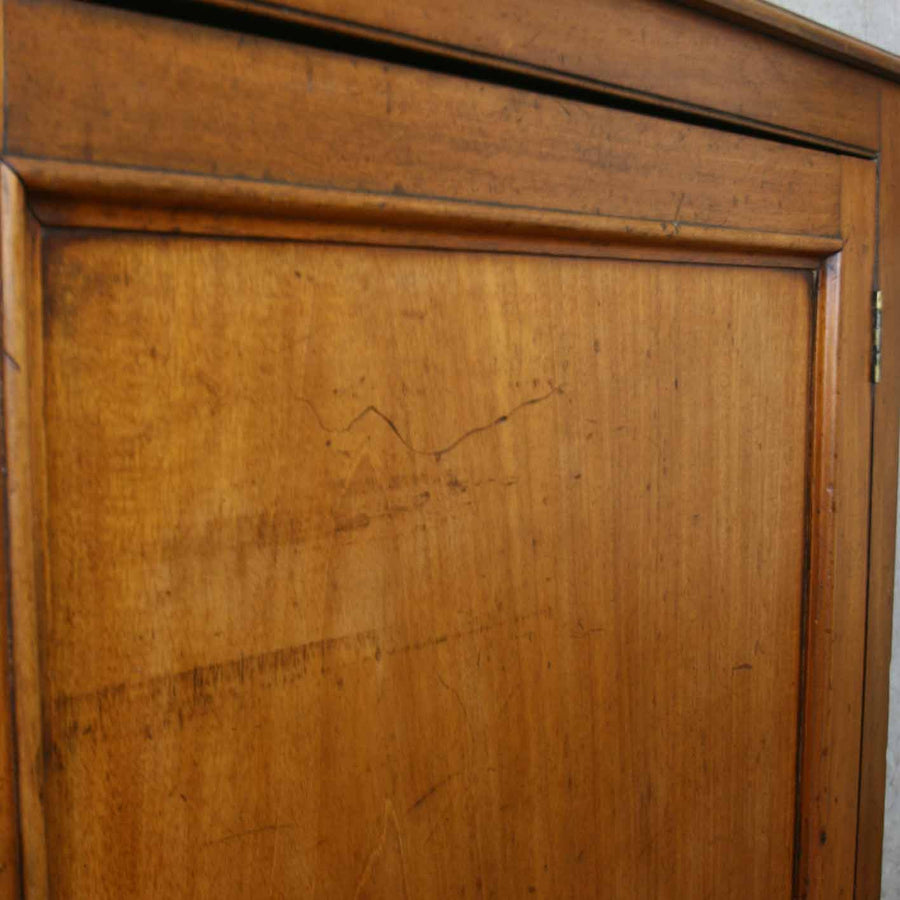 vintage_antique_mahogany_cupboard_cabinet_school_library.7
