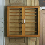 vintage_mid_century_school_laboratory_science_display_cabinet.5