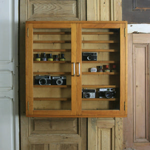 vintage_mid_century_school_laboratory_science_display_cabinet.1