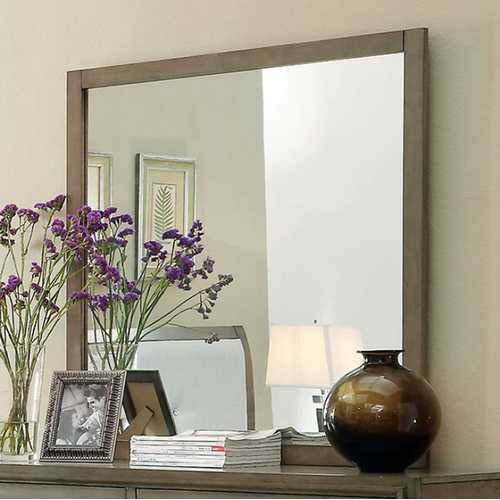Contemporary Style Gray Finish Mirror