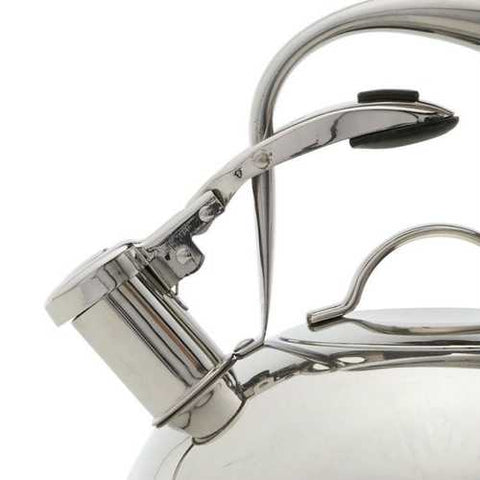 Modern Industrial Stainless Steel 2-qt. Mirrored Tea Kettle