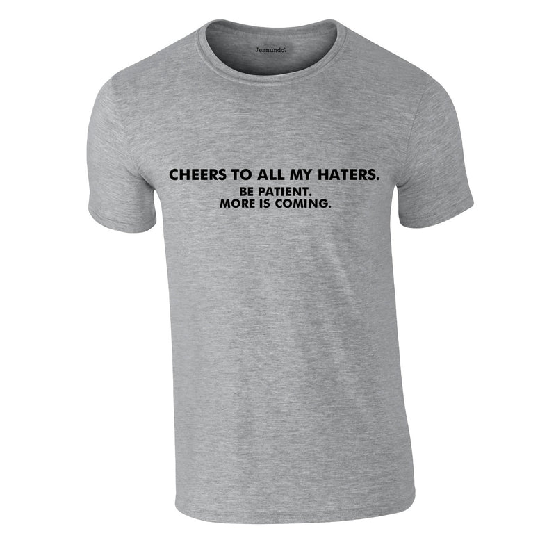 Cheers To All My Haters Tee In Grey
