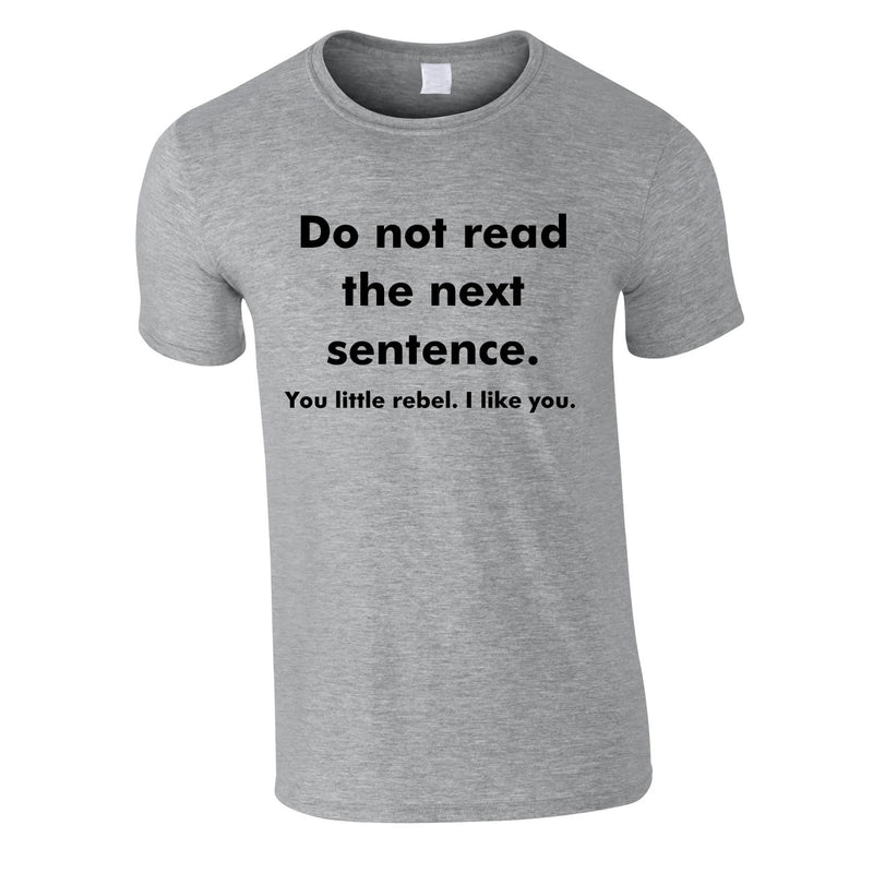 Do Not Read The Next Sentence - You Little Rebel, I Like You Tee In Grey