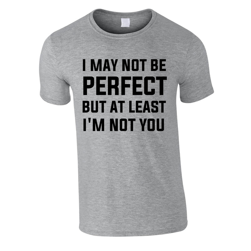 I May Not Be Perfect But At Least I'm Not You Tee In Grey