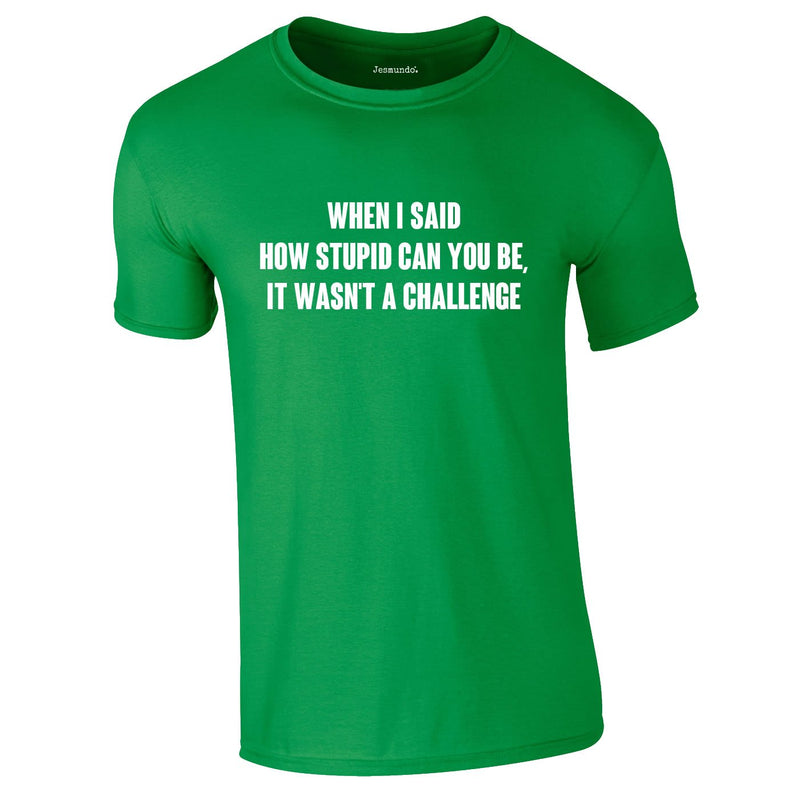 When I Said How Stupid Can You Be It Wasn't A Challenge Tee In Green