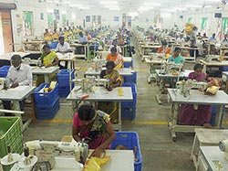 Workers at Teddy Exports