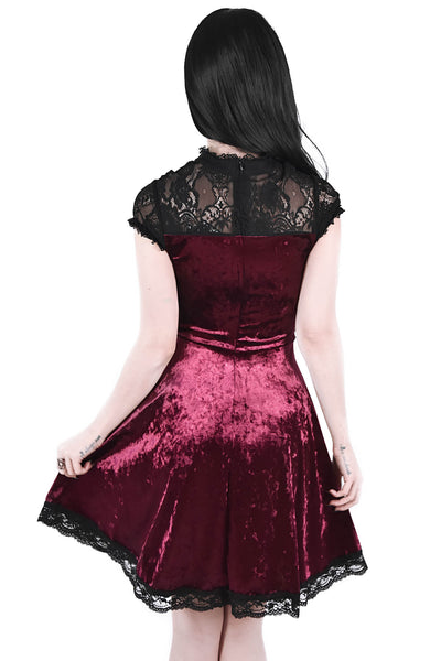Astephana Lace Dress