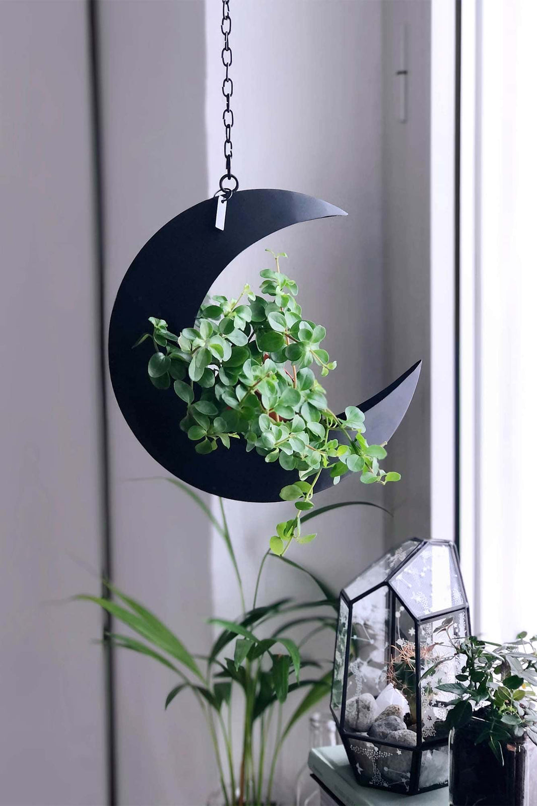 Crescent Hanging Planter