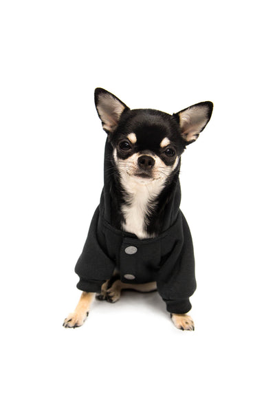 Familiar Dog Hoodie