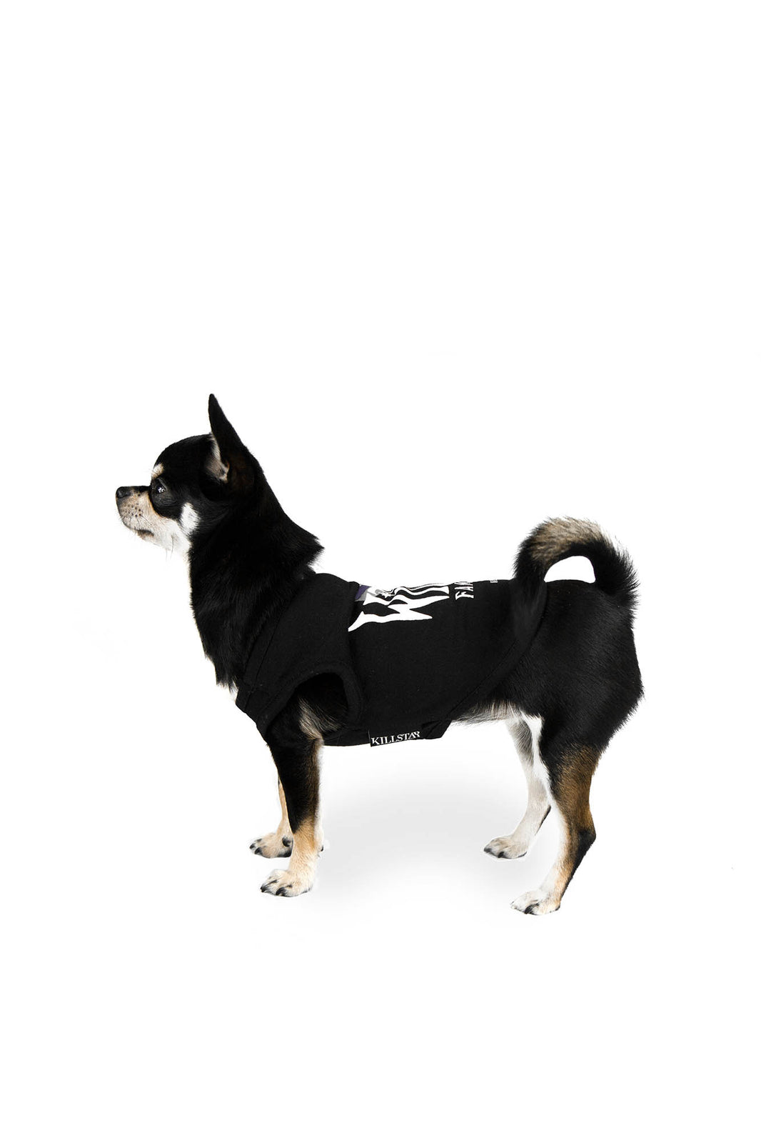 Familiar Dog Vest