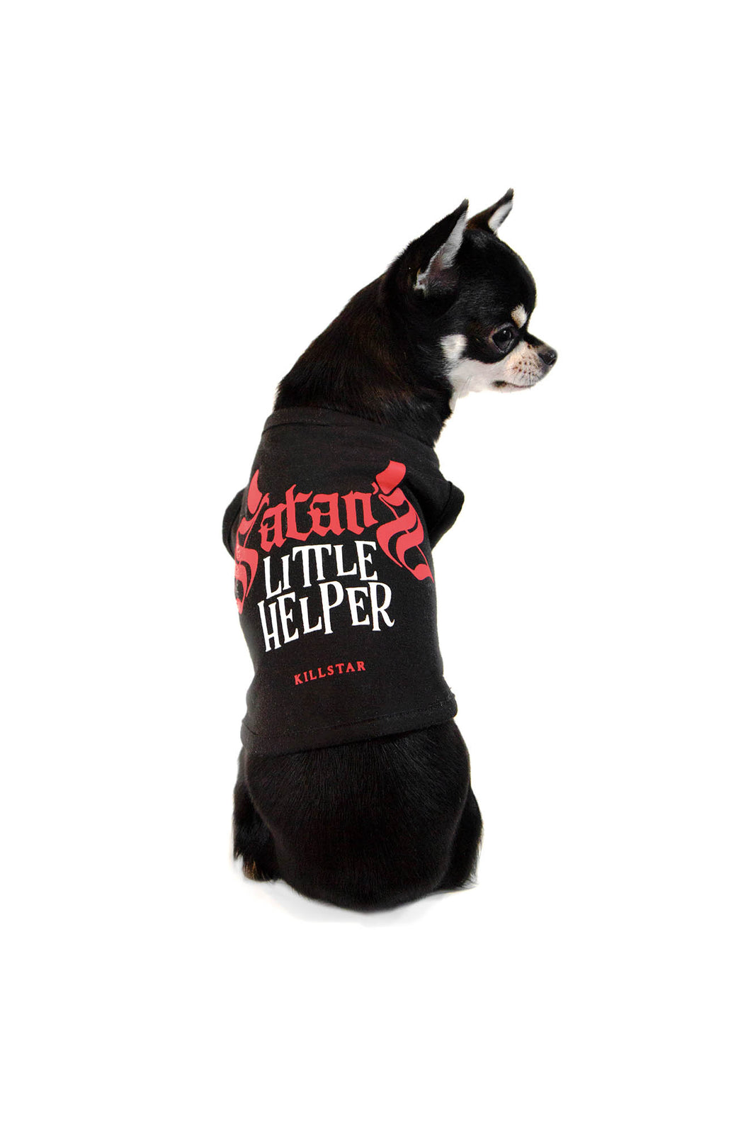 Little Helper Dog Vest