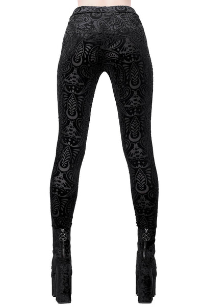 Saiph Burnout Velvet Leggings [B]