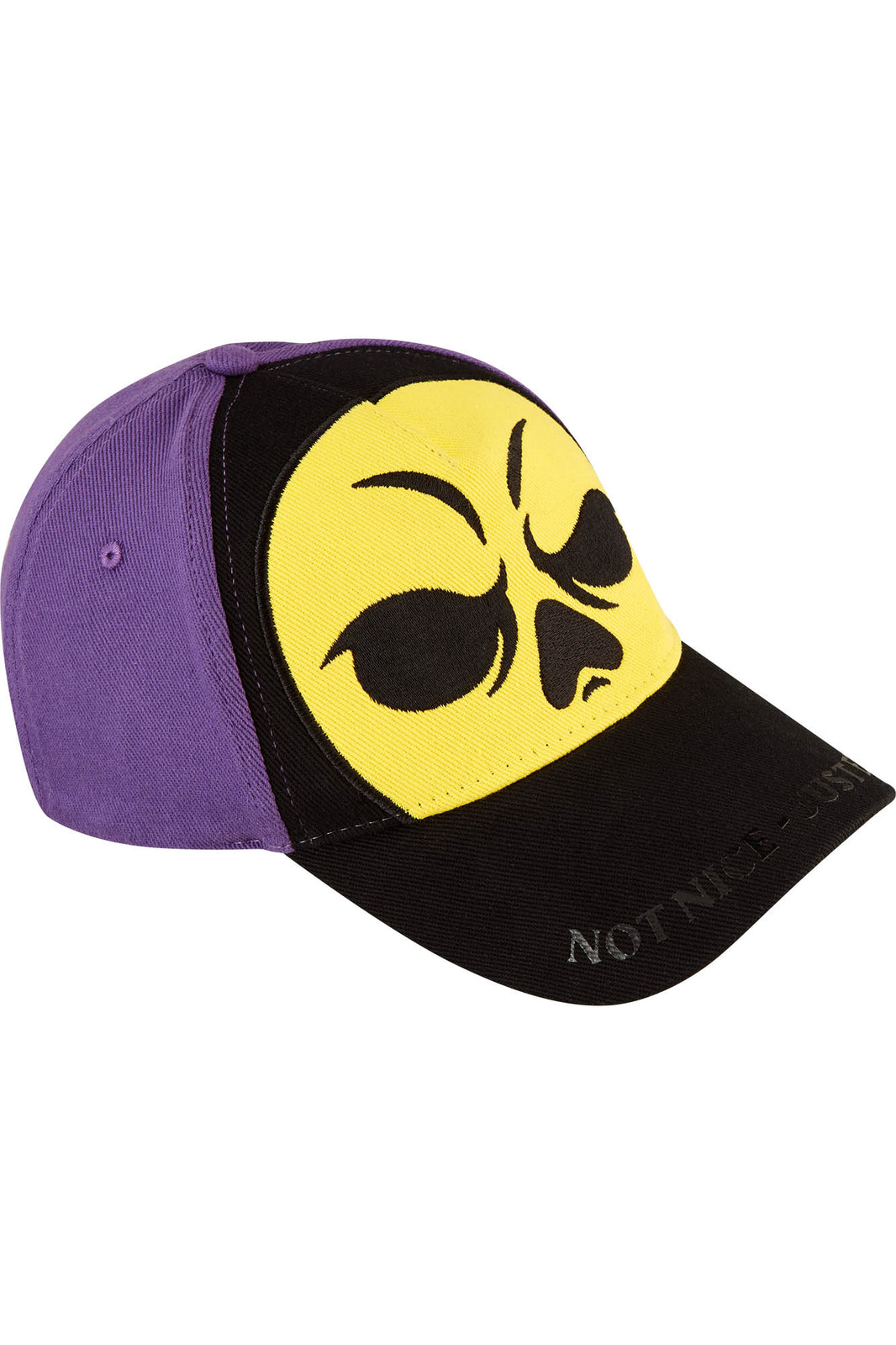 Skeletor Cap