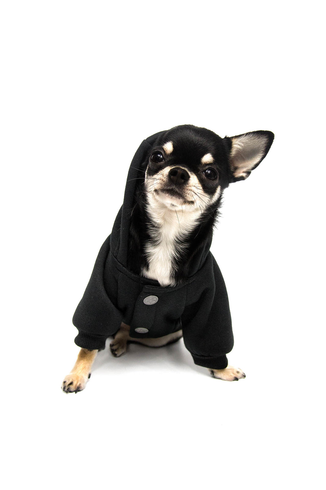 Witch Mom Dog Hoodie