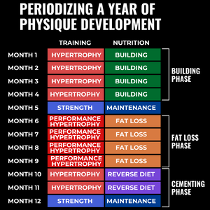 Planning A Year Of Training & Nutrition For Physique Development
