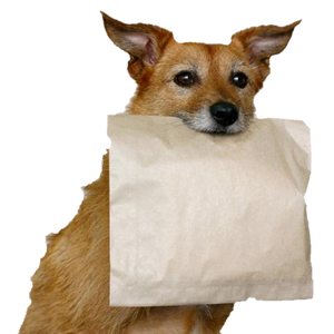 The doggy bag (sales and special buys).