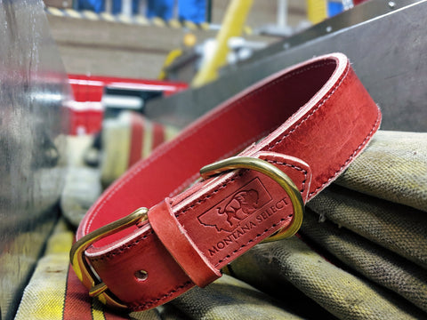 Custom distressed red leather dog collar with solid brass fittings