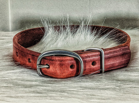 Upcycled horse Hobble Straps leather dog collar - Montana Select Premium Pet Products.