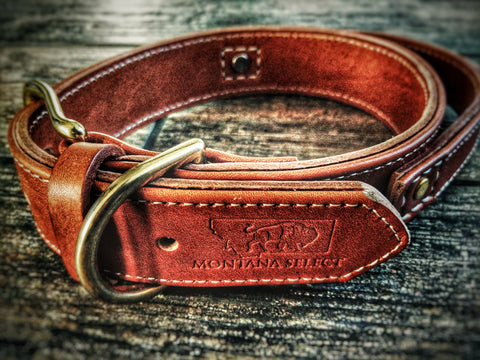 Custom leather collar with solid brass fittings and leather grab handle