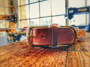 Custom leather collar with solid brass fittings and leather grab handle - Montana Select Premium Pet Products.