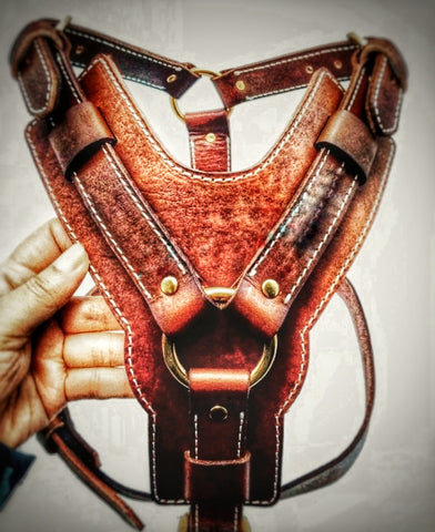 Custom distressed leather harness with solid brass fittings - Montana Select Premium Pet Products.