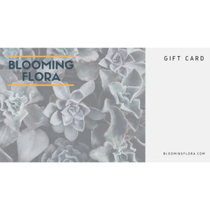 Buy Gift Card - In Stock - Low Price Guarantee - Blooming Flora