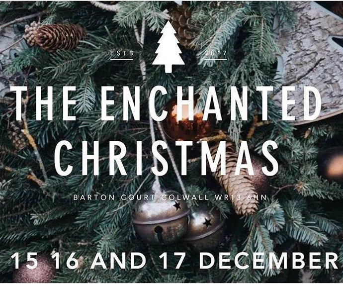 wyatt and jack at barton court | enchanted christmas