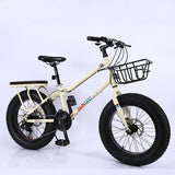 20 INCH Large Tire Mountain Bike Shock Absorption Snowmobile