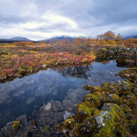 Thingvellir tectonic plates autumn golden circle tour