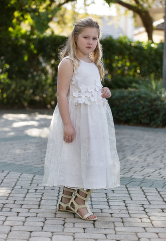 Floral Applique Organza Dress in Creme