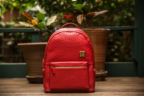 2.0 Red Backpack (Large)