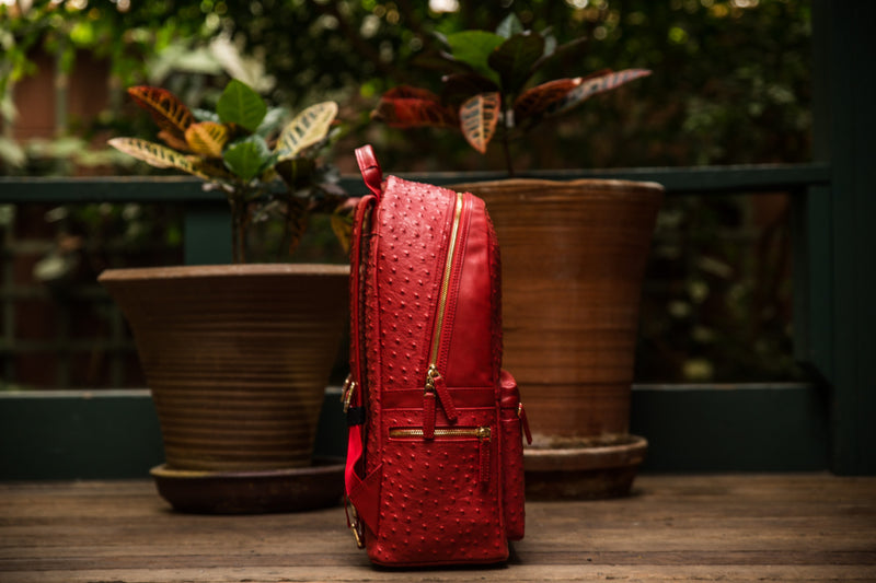 The 2.0 Red Backpack (Large)