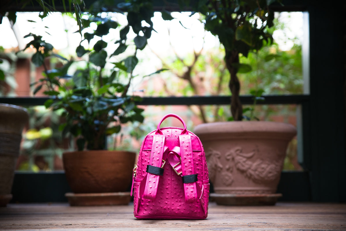 The Crown Collection (Mini) Pink Backpack