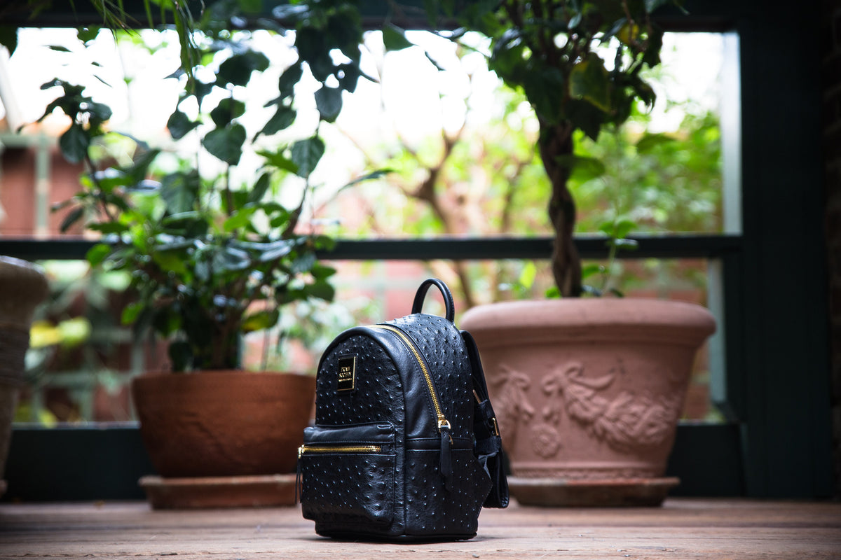 The Crown Collection (Mini) Black Backpack