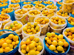 Buckets full with lilikoi passion fruits