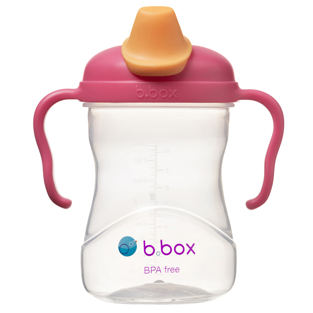 TRANSITION VALUE PACK - RASPBERRY | B.Box - Nurture Little Footprints