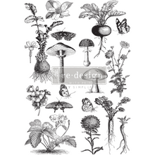 Load image into Gallery viewer, Furniture Decals - Fungi Forest - New Spring 2020 -