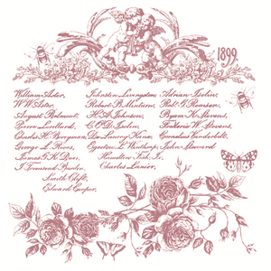 Clear Stamps | Floral Script (New!)