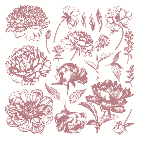 Clear Stamps | Linear Floral (New!)