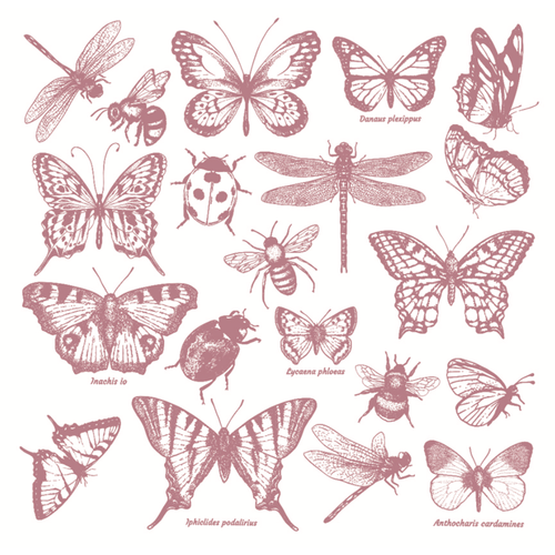 Clear Stamps | Monarch Collection (New!)