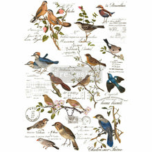Load image into Gallery viewer, Decor Transfers® | Postal Birds