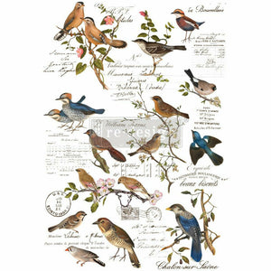 Decor Transfers® | Postal Birds