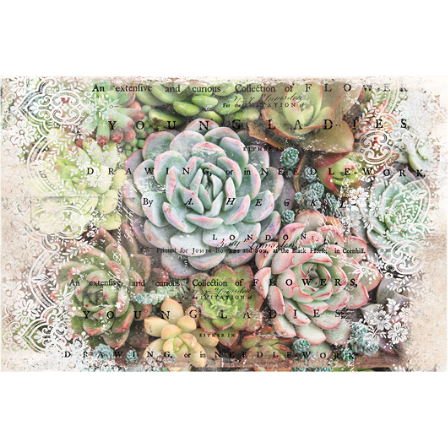 This decoupage paper by ReDesign with Prima has gorgeous gray and green succulents with edges of pink. On the edges of the design there are white laces, and black texts across the entire design giving an impression of thoughts.