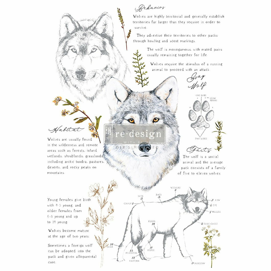 Decor Transfers® | Gray Wolf