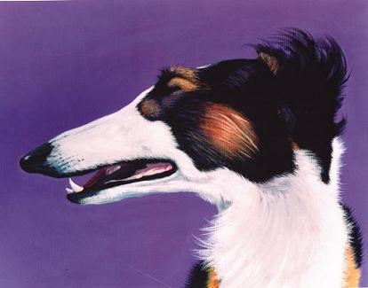 Borzoi  Signed Print of Dog Painting