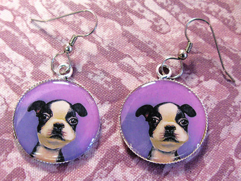 Baby Boston  Earrings